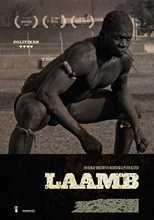 LAAMB
